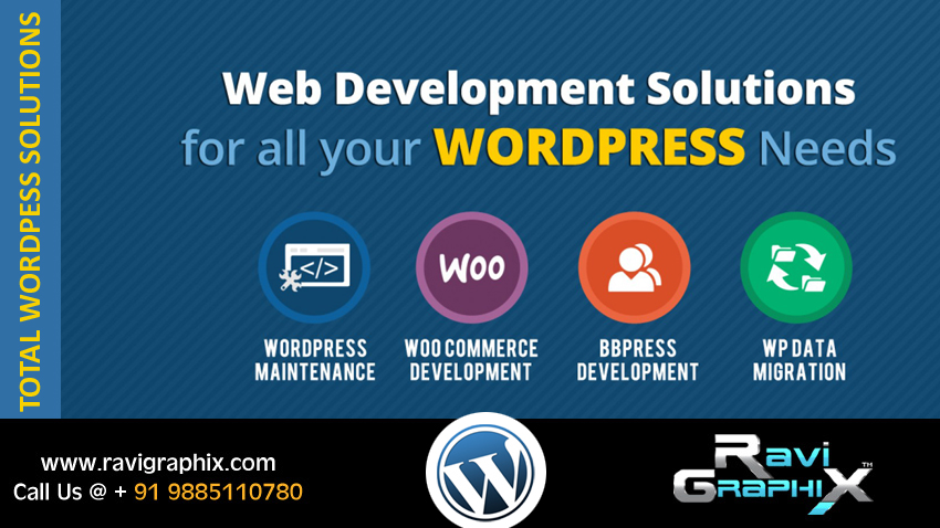 wordpress blog develeopment company in hyderbad, wordpress website development in hyderabad